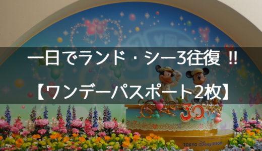 インレポ:2013.5.28(火)ワンデーでディズニーランド・シー3往復・Wイン